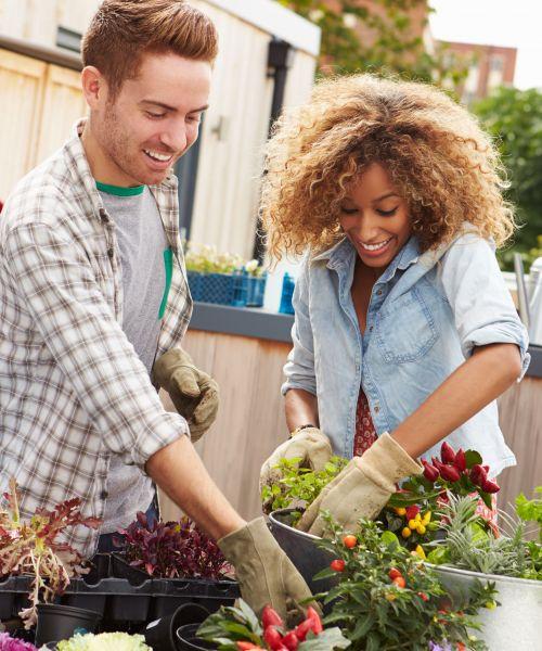Gardeners & Homeowners