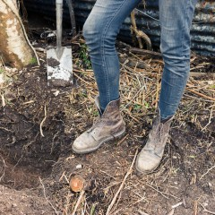 To Restore Our Soils Feed the Microbes