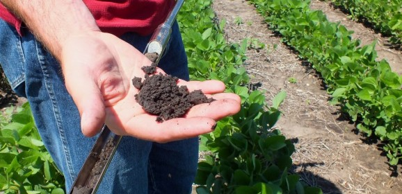 Soil Power! The Dirty Way to a Green Planet