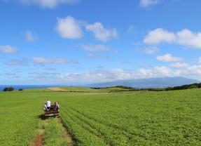 Healthy Soils, Healthy Ranching in Hawai'i