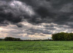More Soil Organic Matter Makes More Rain