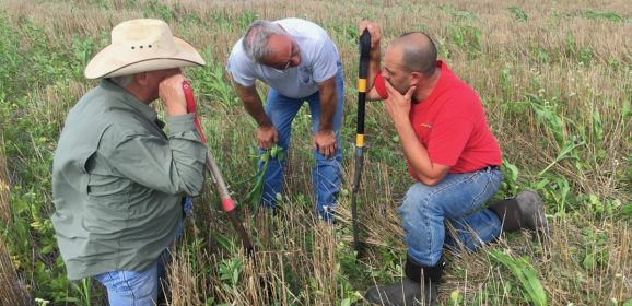 No-Till Farmers' Push for Healthy Soils Ignites a Movement in the Plains